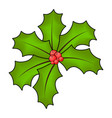 holly berry for christmas isolated on white vector image