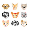set of cute cartoon dogs heads colorful character vector image
