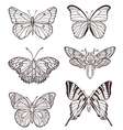 Set of hand drawn butterflies vector image