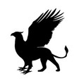 griffin silhouette ancient mythology fantasy vector image