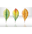 Autumn colorful leafs vector image vector image