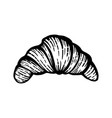 hand drawn of croissant vector image vector image