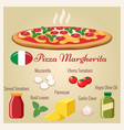 pizza margherita vector image vector image