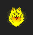 image of a yellow dog pomeranian dog head vector image vector image