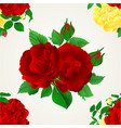 seamless texture red purple and yellow rose vector image