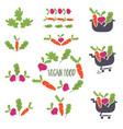 set abstract template logo design for vegan vector image