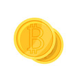 crypto currency bitcoin flat style vector image