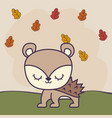 cute porcupine in grass with leafs vector image vector image