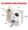 Flushing mechanism Flush toilet