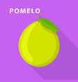 pomelo icon flat style vector image vector image