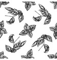 seamless pattern with black and white basil vector image vector image