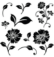 vector daisy and floral ornaments vector image vector image