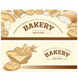 bakery food item bread baguette wheat vector image