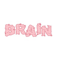 Brain text Letters of convolutions pink Lettering vector image vector image