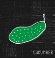 cucumber on grunge background vector image vector image