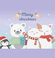 cute bear cats and penguin with gift celebration vector image