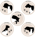 Dog and cat pet shop icons vector image vector image