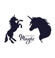 magic unicorn silhouette collection hand vector image vector image