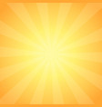 vintage sunrise shining vector image vector image