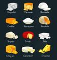 cheese pieces of parmesan and mozzarella food vector image vector image