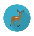 flat icon deer vector image
