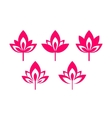 flower logo set vector image