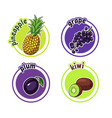 four stickers with different fruits pineapple vector image