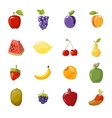juicy fruits collection isolated over white vector image vector image