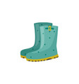 pair of rubber boot in turquoise color vector image