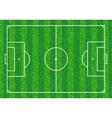 Green Soccer field vector image