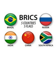 brics association of 5 countries brazil vector image