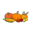 cartoon thanksgiving autumn food pumpkins corn vector image