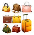 Different bags vector image vector image