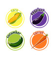 four stickers with different vegetables corn vector image vector image