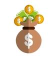money symbol icon vector image