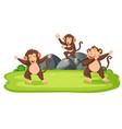 monkeys in the wild vector image vector image