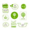 organic bio product natural food vector image vector image