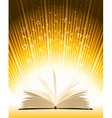 Opened magic book vector image