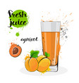 apricot juice fresh hand drawn watercolor fruits vector image