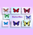 butterflies on colored paper sheets vector image