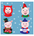christmas collection with funny pigs in caps vector image