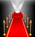 Empty stage with red carpet vector image vector image