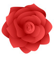 isolated rose flower vector image vector image