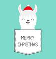 merry christmas llama alpaca sitting in the vector image