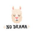 no drama lama head and hand drawn quote cute vector image vector image