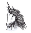unicorn horse head sketch for tattoo design vector image