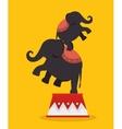 elephants acrobats festival funfair vector image