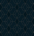 abstract geometric pattern with lines on dark vector image vector image
