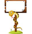 cartoon brown snake vector image