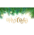 christmas card with text and fir tree branches vector image vector image